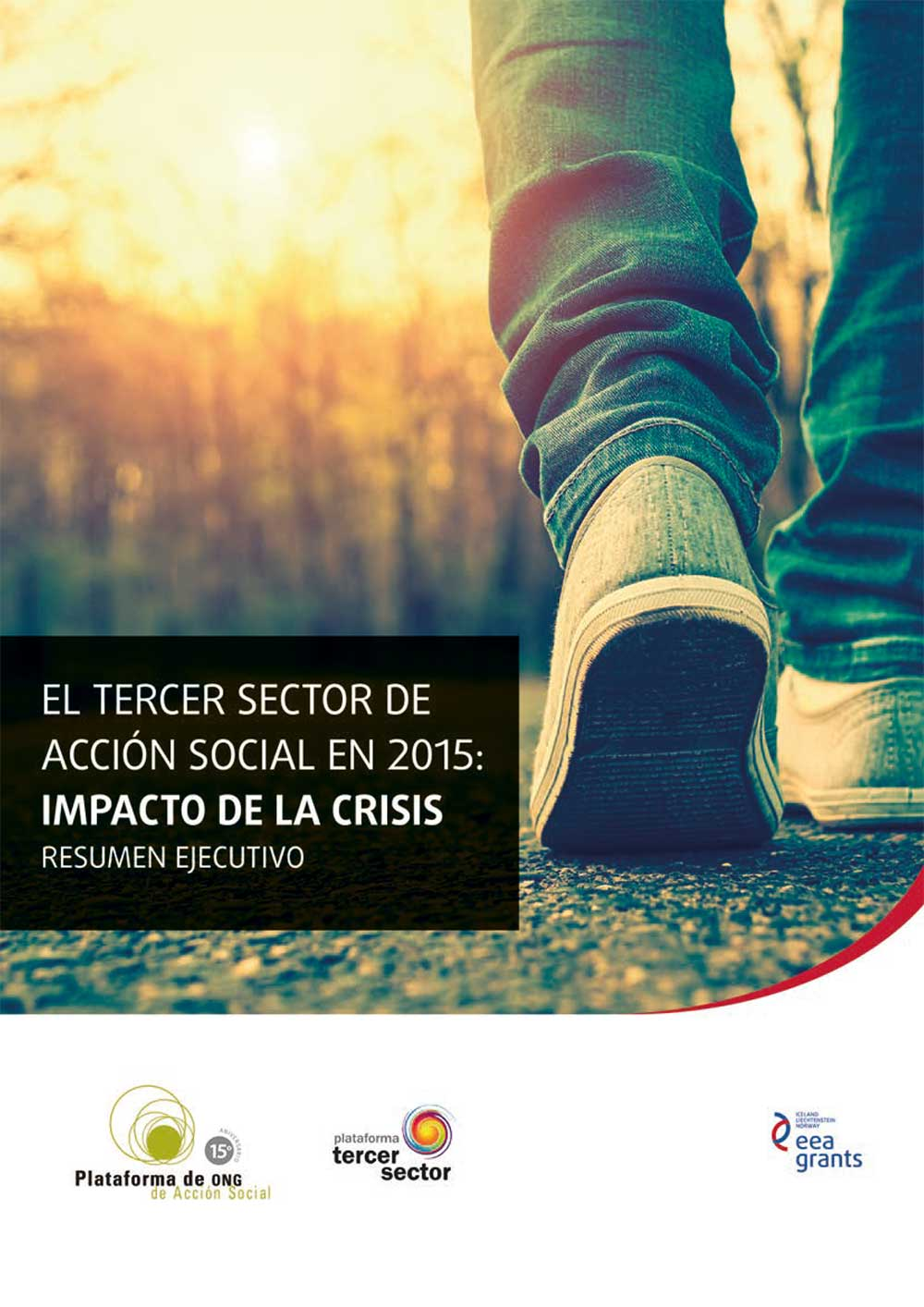 Study of the Third Sector of Social Action